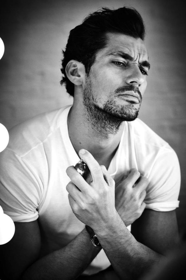 GRAZIA ITALIA David Gandy by Esther Haase. Elisabetta Cavatorta, Summer 2015, www.imageamplified.com, Image Amplified (7)