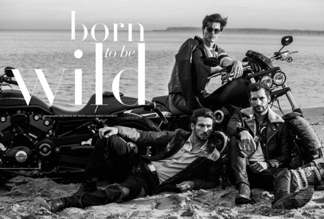 HIPSTER MAGAZINE Born to be Wild by Michelle Du Xuan. Sonia Logerot, Spring 2015, www.imageamplified.com, Image Amplified (1)