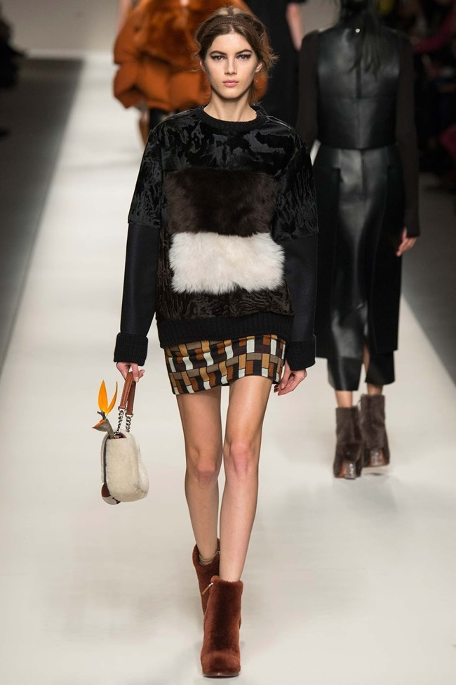 MILAN FASHION WEEK Fendi Fall 2015. www.imageamplified.com, Image Amplified (20)