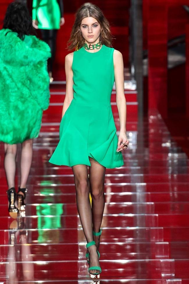 MILAN FASHION WEEK Versace Fall 2015. www.imageamplified.com, Image Amplified (42)