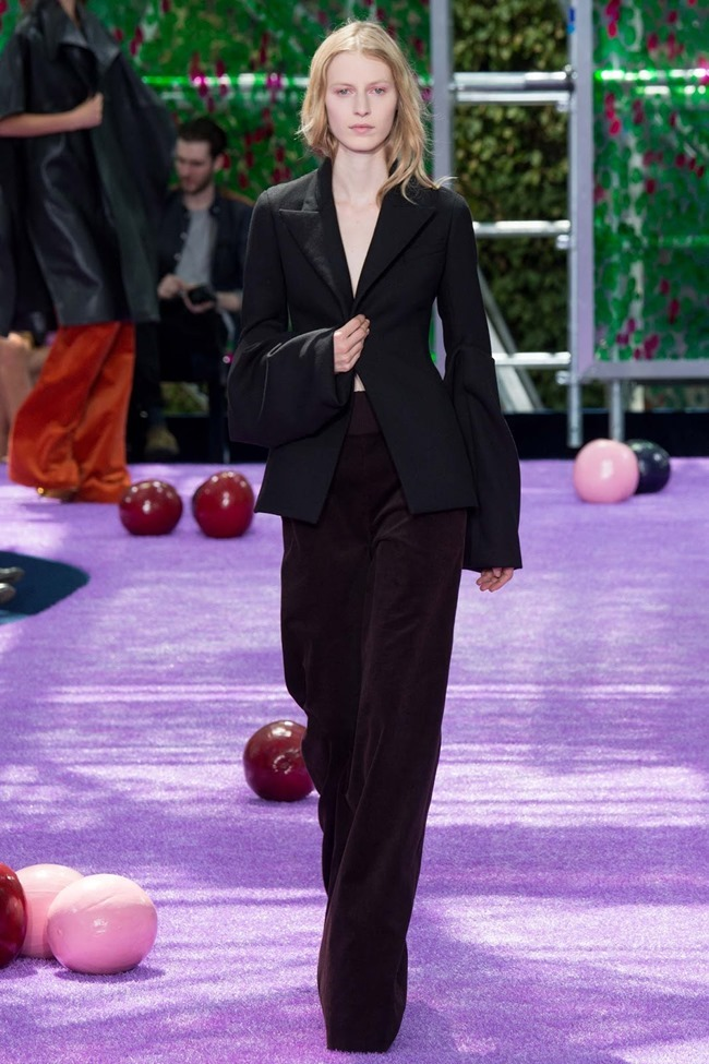 PARIS HAUTE COUTURE Dior Fall 2015. www.imageamplified.com, Image Amplified (18)