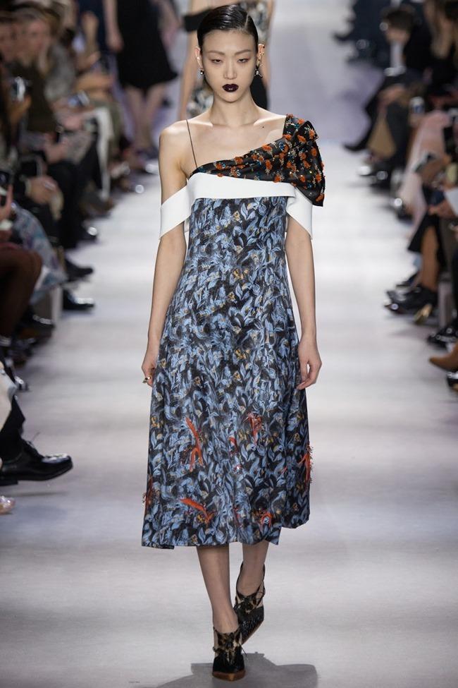 PARIS FASHION WEEK Christian Dior Fall 2016. www.imageamplified.com, Image Amplified (39)